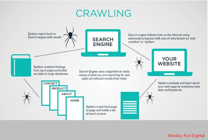 SEO Optimization: How Do Search Engines Really Work?